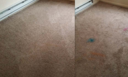 Big Rapids Carpet Cleaning.jpg